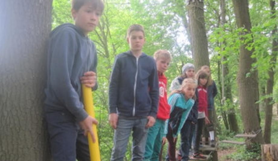 Zusammenhalt und Zusammenarbeit trainieren: auf dem Niedrigseilgarten
